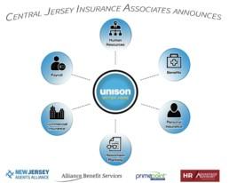 unison professional service organization wheel chart
