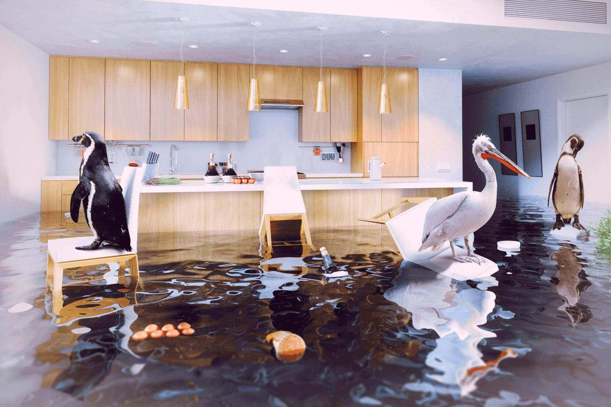 Commercial Flood Insurance for NJ Property Owners